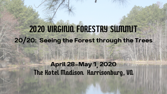 2020 VA Forestry Summit